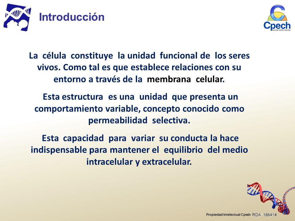 Propiedad Intelectual Cpech Introducción La célula constituye la unidad funcional de los seres vivos.