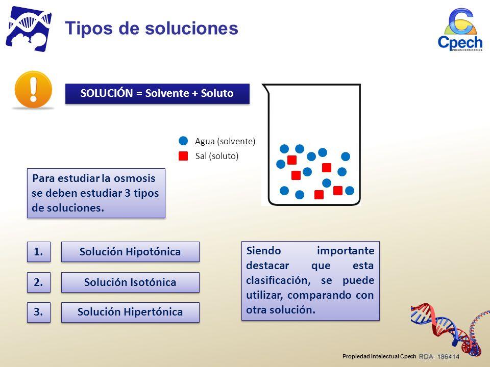 Propiedad Intelectual Cpech Para estudiar la osmosis se deben estudiar 3 tipos de soluciones.