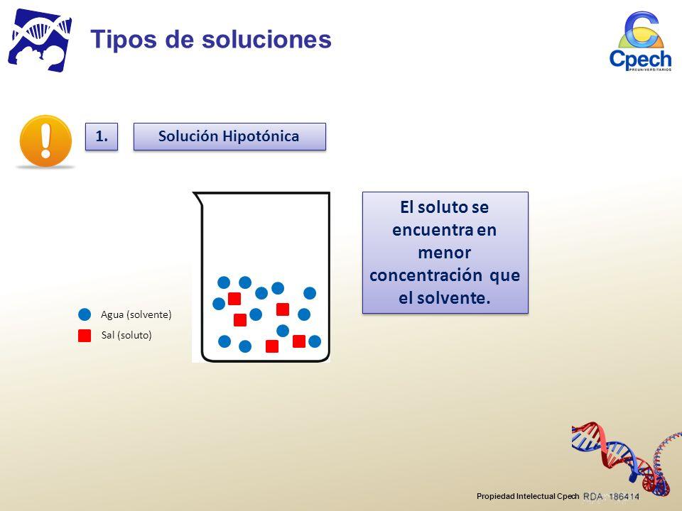 Propiedad Intelectual Cpech Solución Hipotónica Agua (solvente) Sal (soluto) El soluto se encuentra en menor concentración que el solvente.