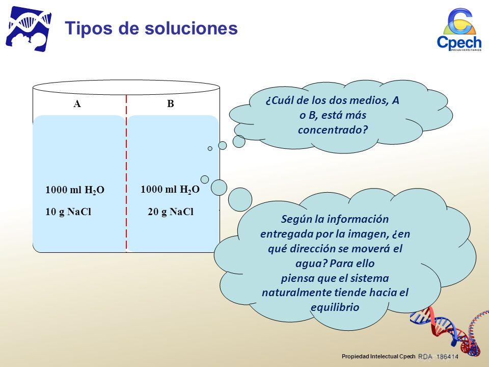 Propiedad Intelectual Cpech AB 1000 ml H 2 O 10 g NaCl20 g NaCl Tipos de soluciones ¿Cuál de los dos medios, A o B, está más concentrado.