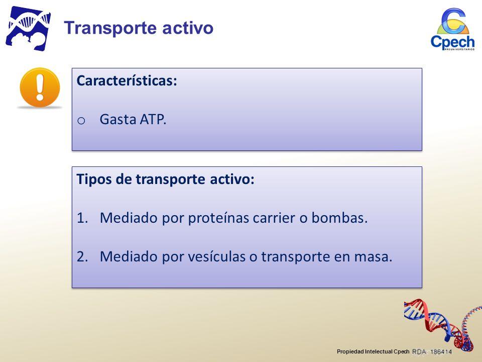 Propiedad Intelectual Cpech Características: o Gasta ATP.