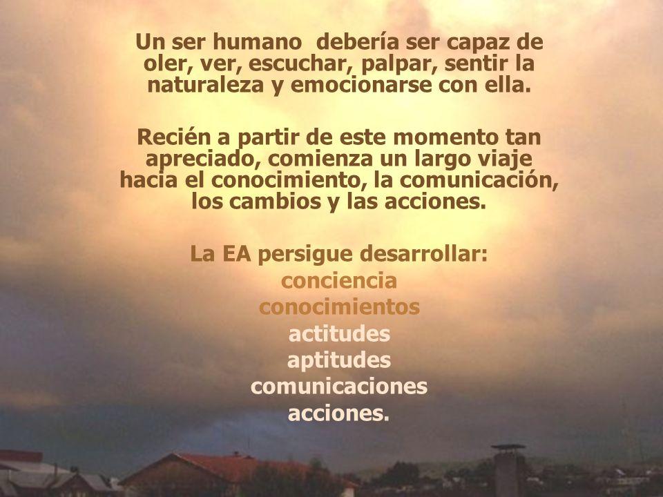 Un ser humano debería ser capaz de oler, ver, escuchar, palpar, sentir la naturaleza y emocionarse con ella. Recién a partir de este momento tan aprec