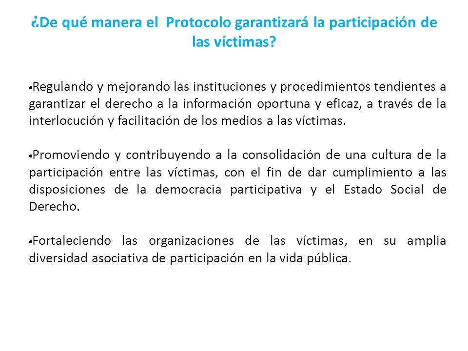 ¿ De qué manera el Protocolo garantizará la participación de las víctimas? Regulando y mejorando las instituciones y procedimientos tendientes a garan