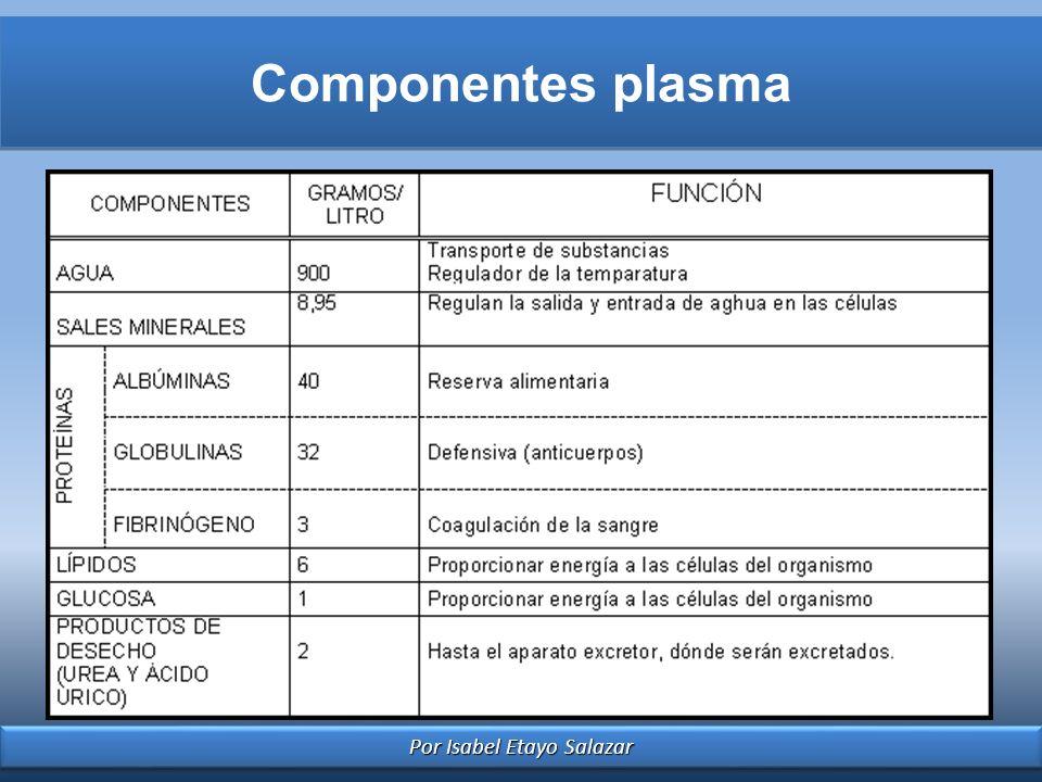 Por Isabel Etayo Salazar Componentes plasma