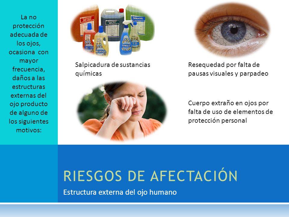 RIESGOS DE AFECTACIÓN Estructura externa del ojo humano La no protección adecuada de los ojos, ocasiona con mayor frecuencia, daños a las estructuras