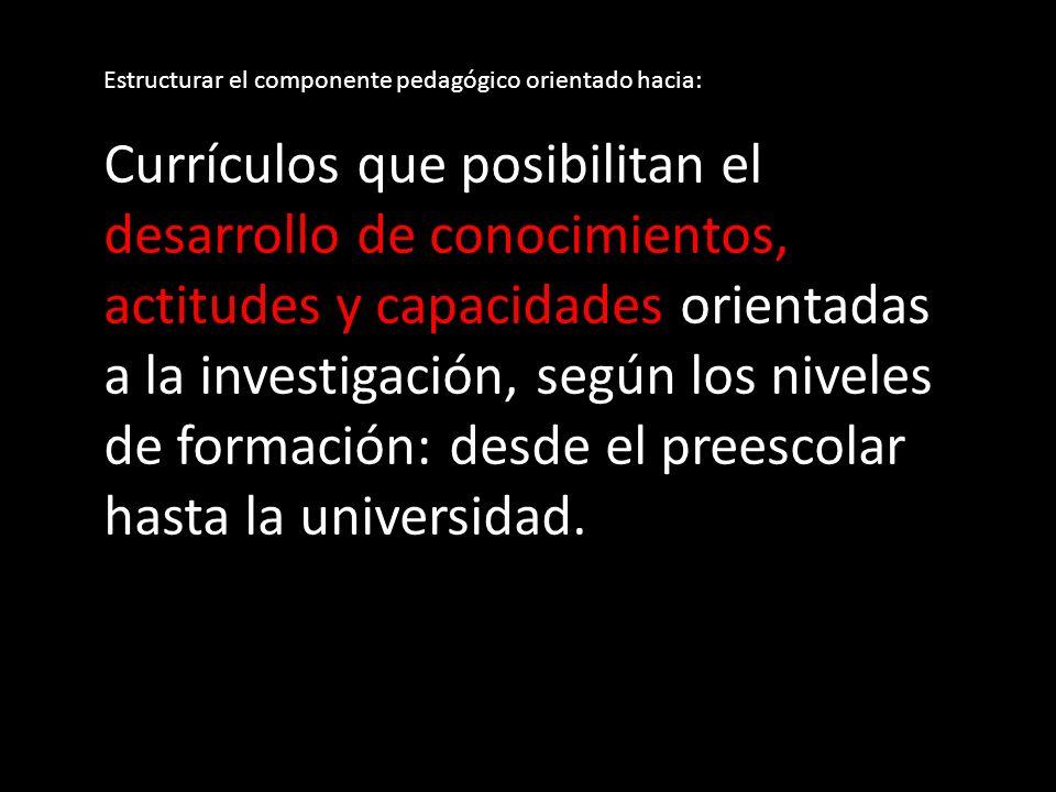Estructurar el componente pedagógico orientado hacia: Currículos que posibilitan el desarrollo de conocimientos, actitudes y capacidades orientadas a la investigación, según los niveles de formación: desde el preescolar hasta la universidad.