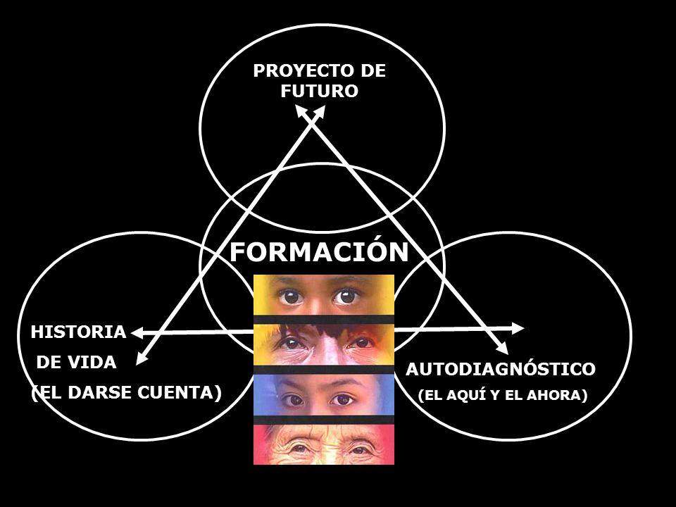 PROYECTO DE FUTURO HISTORIA DE VIDA (EL DARSE CUENTA) AUTODIAGNÓSTICO (EL AQUÍ Y EL AHORA) FORMACIÓN