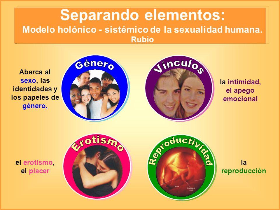 Separando elementos: Modelo holónico - sistémico de la sexualidad humana. Rubio Abarca al sexo, las identidades y los papeles de género, el erotismo,