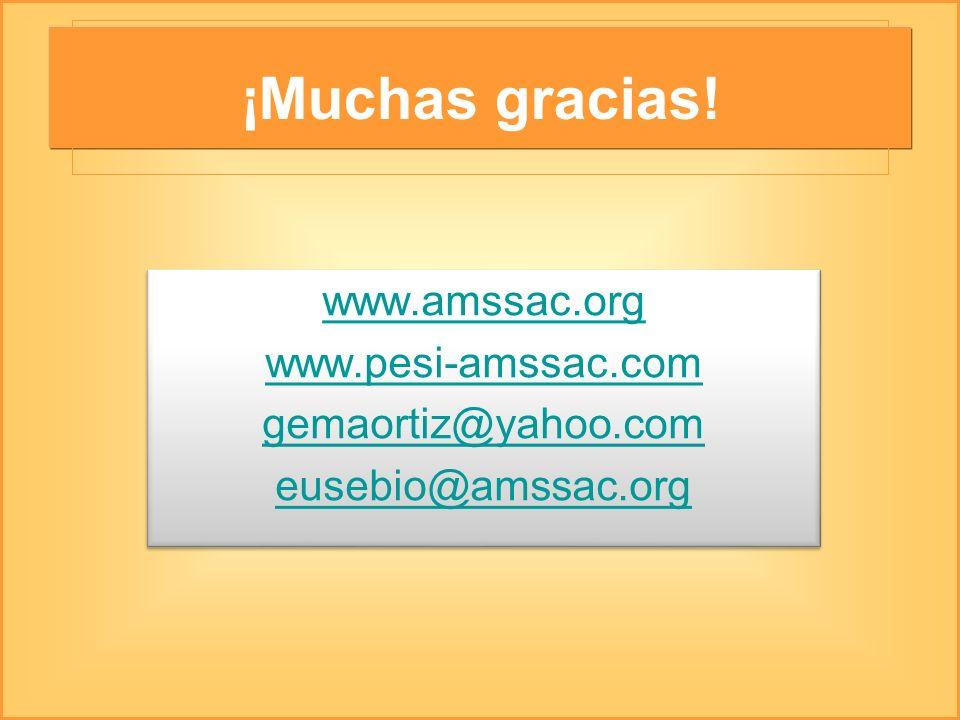 ¡Muchas gracias! www.amssac.org www.pesi-amssac.com gemaortiz@yahoo.com eusebio@amssac.org www.amssac.org www.pesi-amssac.com gemaortiz@yahoo.com euse