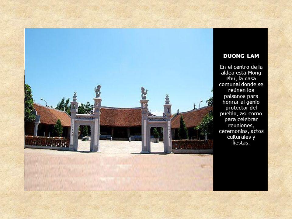 DUONG LAM En el centro de la aldea está Mong Phu, la casa comunal donde se reúnen los paisanos para honrar al genio protector del pueblo, asi como para celebrar reuniones, ceremonias, actos culturales y fiestas.