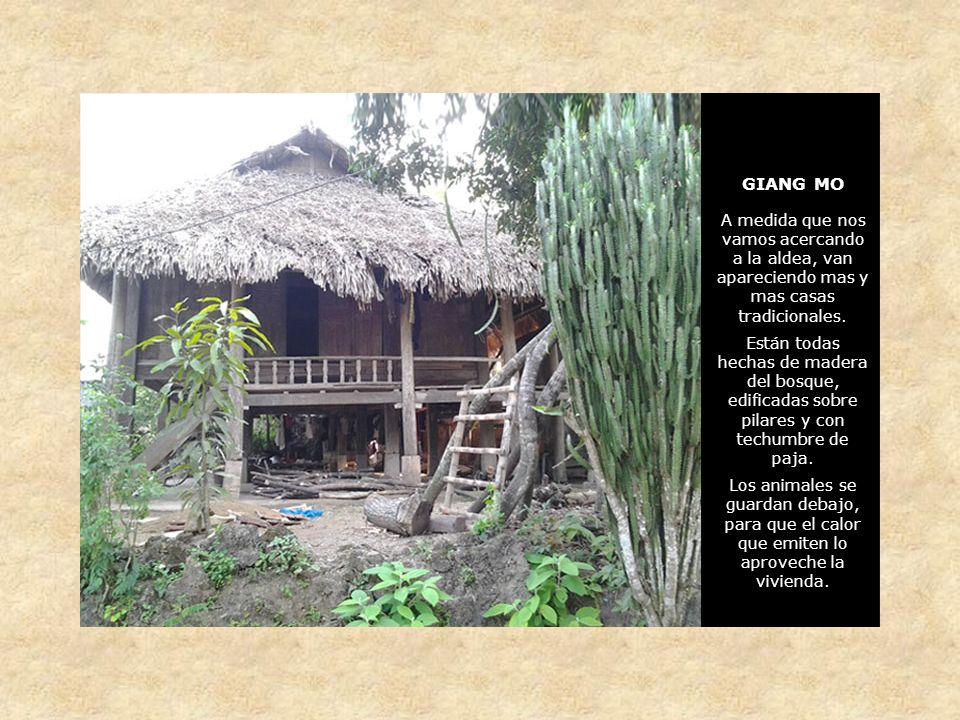 GIANG MO A medida que nos vamos acercando a la aldea, van apareciendo mas y mas casas tradicionales.