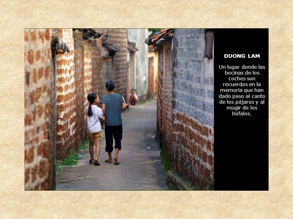 DUONG LAM Un lugar en el que la vida discurre muy lentamente, a ritmo humano, pegada al arrozal y al búfalo Con callejuelas diseñadas por el tiempo para ser transitadas a pie o en bicicleta
