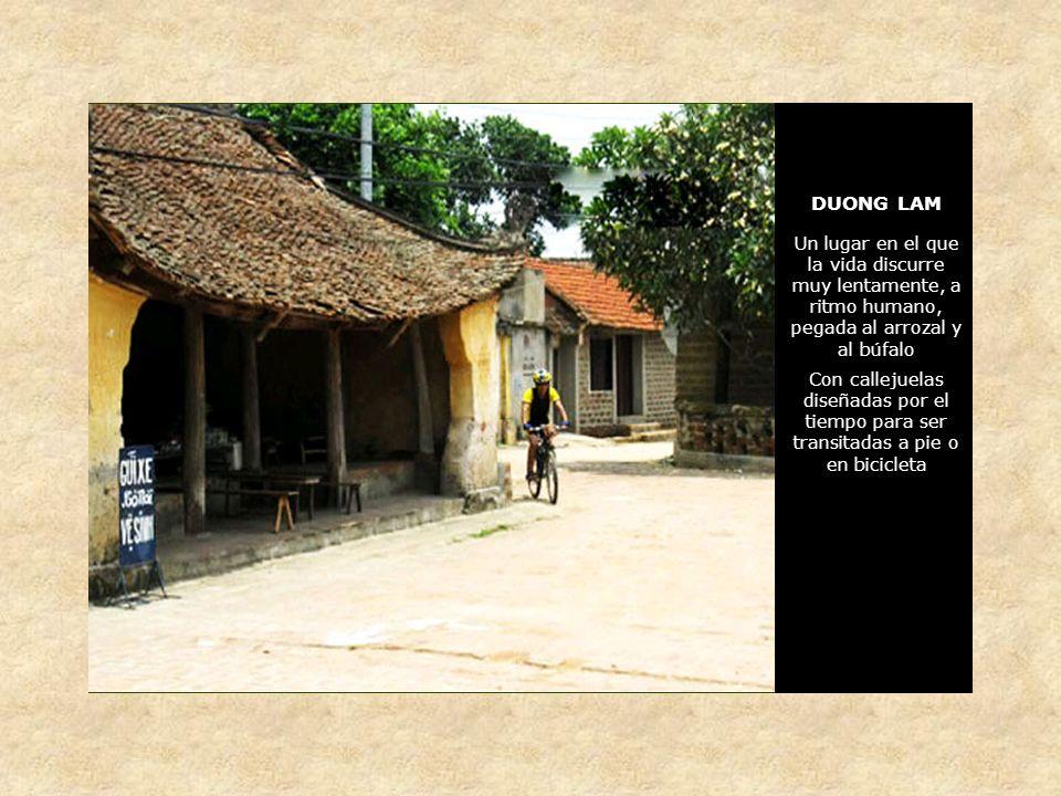 DUONG LAM Nuestro primer contacto con la aldea será a través del mercado callejero.