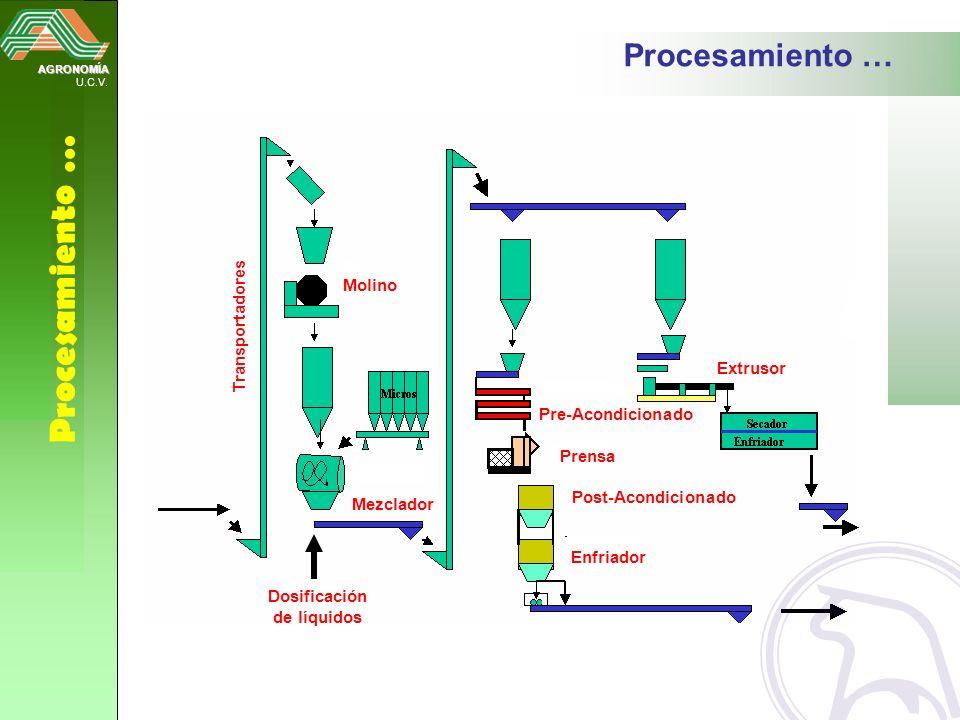AGRONOMÍA U.C.V. Procesamiento … Mezclador Molino Transportadores Pre-Acondicionado Post-Acondicionado Prensa Enfriador Extrusor Dosificación de líqui