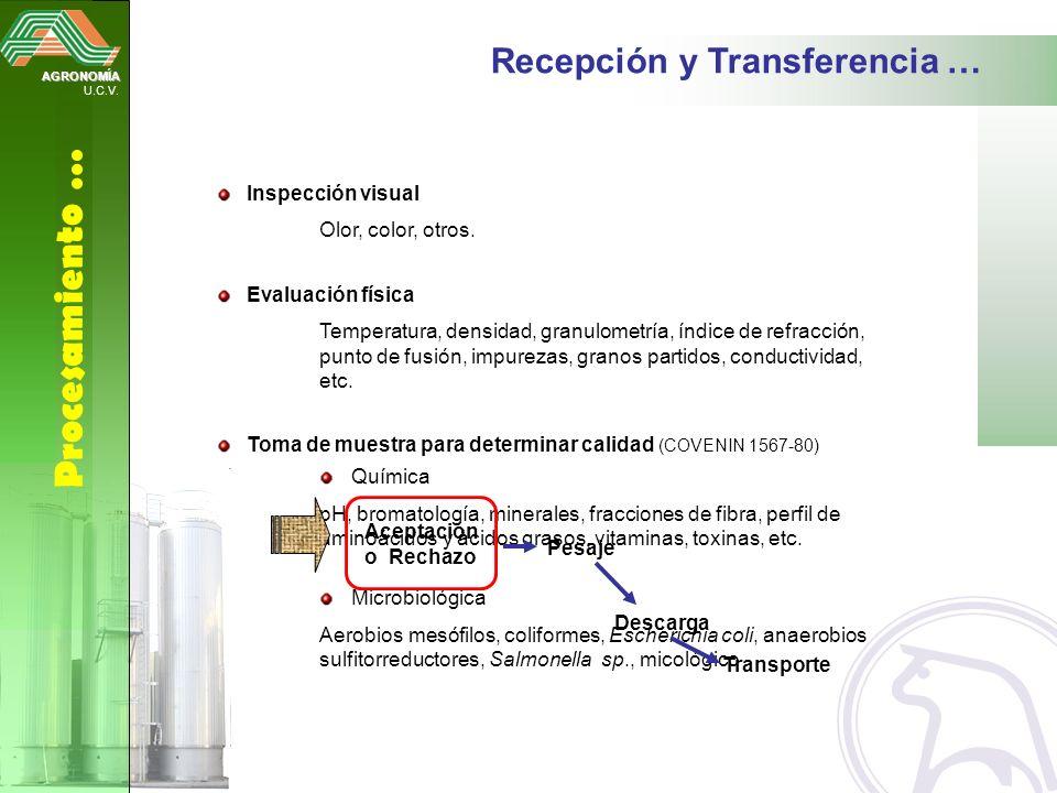 AGRONOMÍA U.C.V. Procesamiento … Recepción y Transferencia … Inspección visual Olor, color, otros. Evaluación física Temperatura, densidad, granulomet
