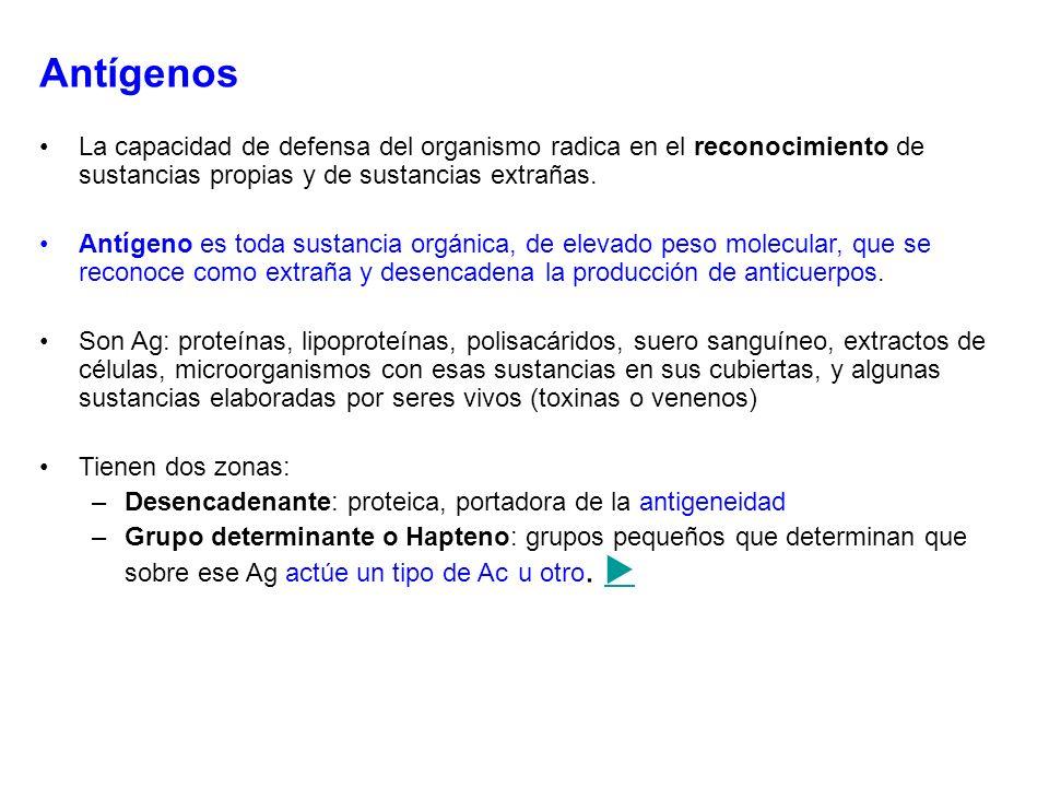 Antígenos La capacidad de defensa del organismo radica en el reconocimiento de sustancias propias y de sustancias extrañas. Antígeno es toda sustancia