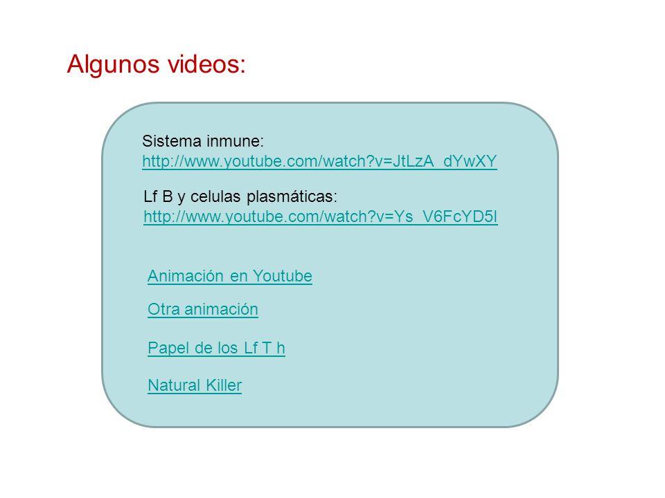 Algunos videos: Sistema inmune: http://www.youtube.com/watch?v=JtLzA_dYwXY Lf B y celulas plasmáticas: http://www.youtube.com/watch?v=Ys_V6FcYD5I Anim