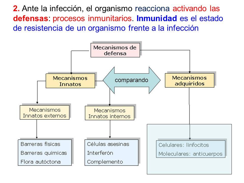 2. Ante la infección, el organismo reacciona activando las defensas: procesos inmunitarios. Inmunidad es el estado de resistencia de un organismo fren