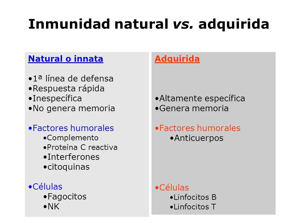 Inmunidad natural vs. adquirida Natural o innata 1ª línea de defensa Respuesta rápida Inespecífica No genera memoria Factores humorales Complemento Pr