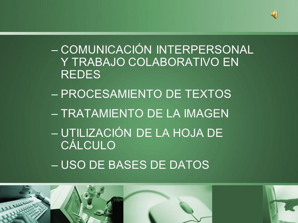 39 competencias básicas en TIC agrupadas en 11 dimensiones –CONOCIMIENTO DE LOS SISTEMAS INFORMÁTICOS (HARDWARE, REDES, SOFTWARE) –USO DEL SISTEMA OPERATIVO –BÚSQUEDA Y SELECCIÓN DE INFORMACIÓN A TRAVÉS DE INTERNET
