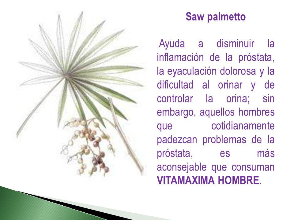 Saw palmetto Ayuda a disminuir la inflamación de la próstata, la eyaculación dolorosa y la dificultad al orinar y de controlar la orina; sin embargo,
