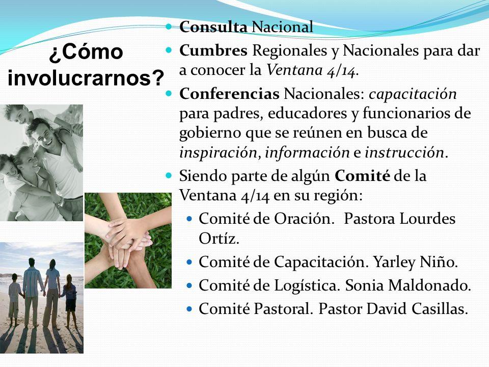¿Cómo involucrarnos? Consulta Nacional Cumbres Regionales y Nacionales para dar a conocer la Ventana 4/14. Conferencias Nacionales: capacitación para
