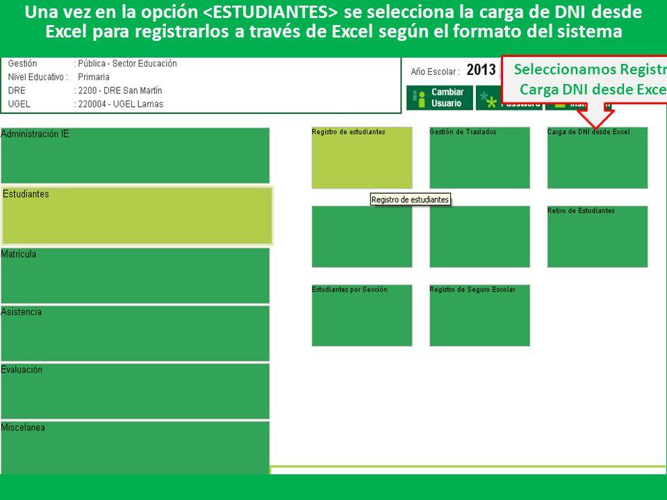 Una vez en la opción se selecciona la carga de DNI desde Excel para registrarlos a través de Excel según el formato del sistema Seleccionamos Registro Carga DNI desde Excel