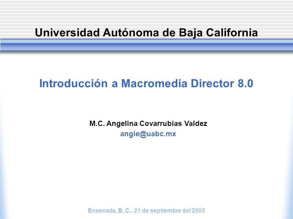 Introducción a Macromedia Director 8.0 M.C.