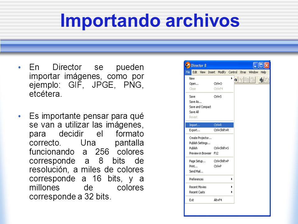 Importando archivos En Director se pueden importar imágenes, como por ejemplo: GIF, JPGE, PNG, etcétera.