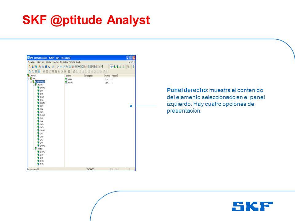 SKF @ptitude Analyst Panel derecho: muestra el contenido del elemento seleccionado en el panel izquierdo.