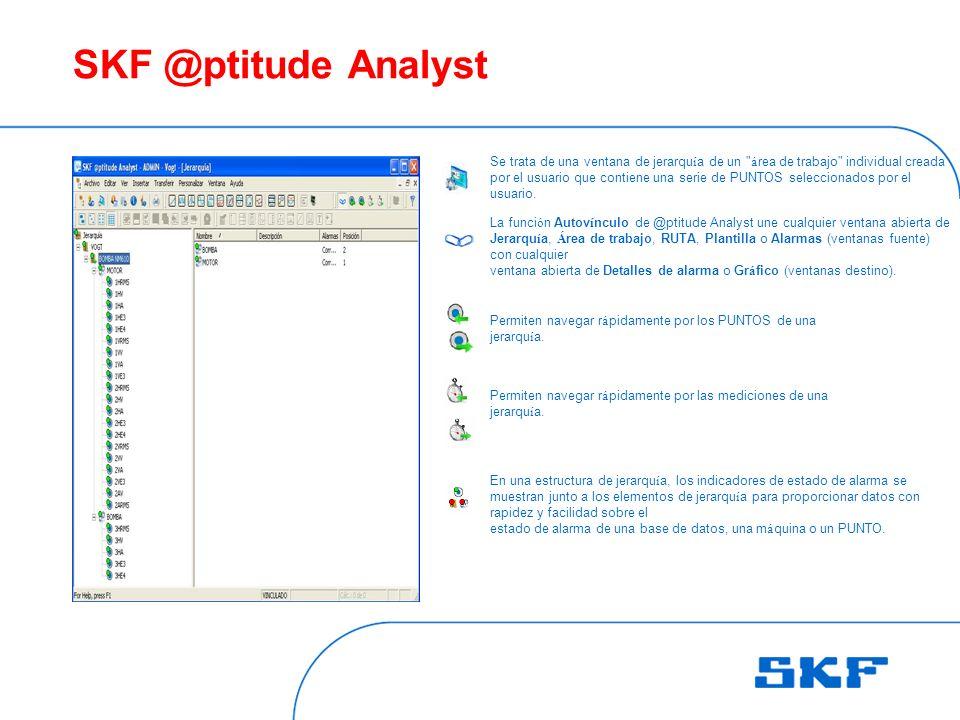 SKF @ptitude Analyst Se trata de una ventana de jerarqu í a de un á rea de trabajo individual creada por el usuario que contiene una serie de PUNTOS seleccionados por el usuario.