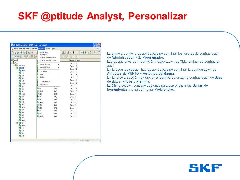 SKF @ptitude Analyst, Personalizar La primera contiene opciones para personalizar los valores de configuraci ó n de Administrador y de Programador.