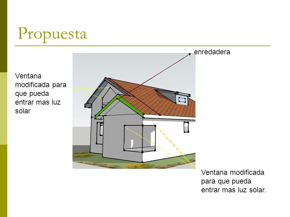 Propuesta enredadera Ventana modificada para que pueda entrar mas luz solar.