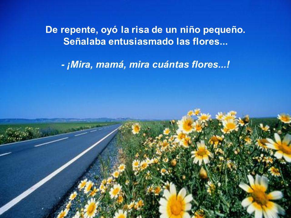 De repente, oyó la risa de un niño pequeño. Señalaba entusiasmado las flores... - ¡Mira, mamá, mira cuántas flores...!