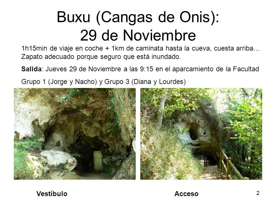 2 Buxu (Cangas de Onis): 29 de Noviembre VestíbuloAcceso 1h15min de viaje en coche + 1km de caminata hasta la cueva, cuesta arriba… Zapato adecuado porque seguro que está inundado.