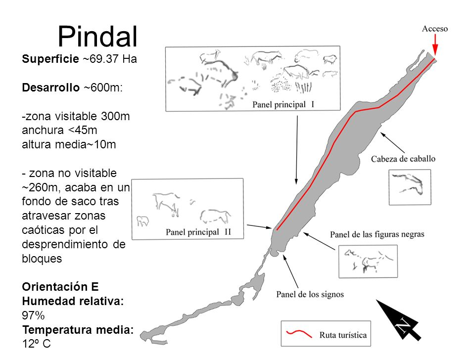 6 Superficie ~69.37 Ha Desarrollo ~600m: -zona visitable 300m anchura <45m altura media~10m - zona no visitable ~260m, acaba en un fondo de saco tras atravesar zonas caóticas por el desprendimiento de bloques Orientación E Humedad relativa: 97% Temperatura media: 12º C