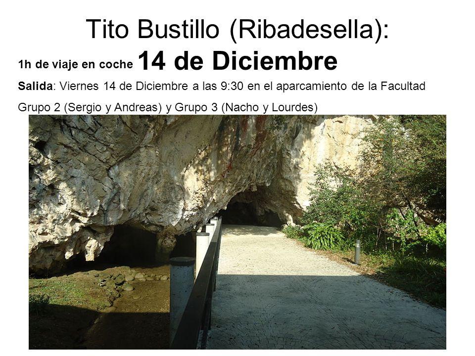 7 Tito Bustillo (Ribadesella): 14 de Diciembre 1h de viaje en coche Salida: Viernes 14 de Diciembre a las 9:30 en el aparcamiento de la Facultad Grupo 2 (Sergio y Andreas) y Grupo 3 (Nacho y Lourdes)