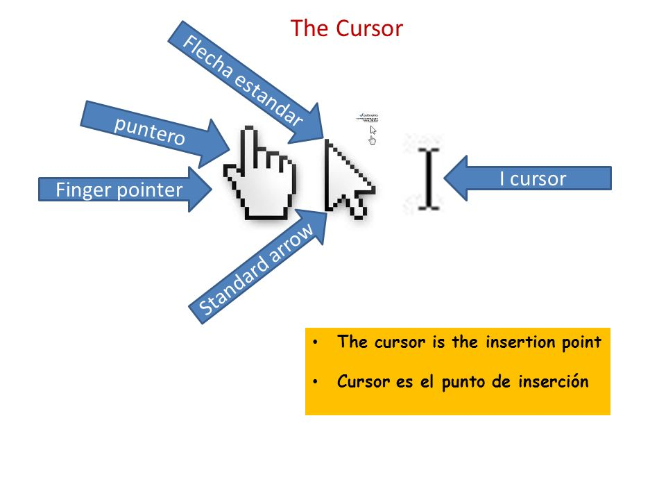 The Cursor I cursor The cursor is the insertion point Cursor es el punto de inserción Standard arrow Finger pointer puntero Flecha estandar