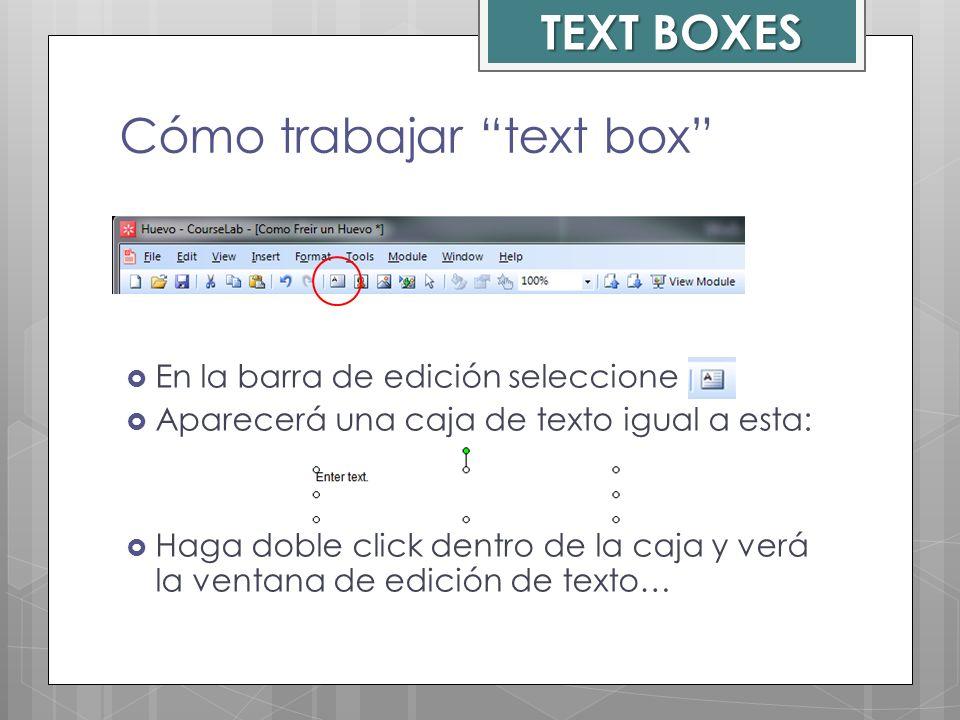 Cómo trabajar text box En la barra de edición seleccione Aparecerá una caja de texto igual a esta: Haga doble click dentro de la caja y verá la ventan