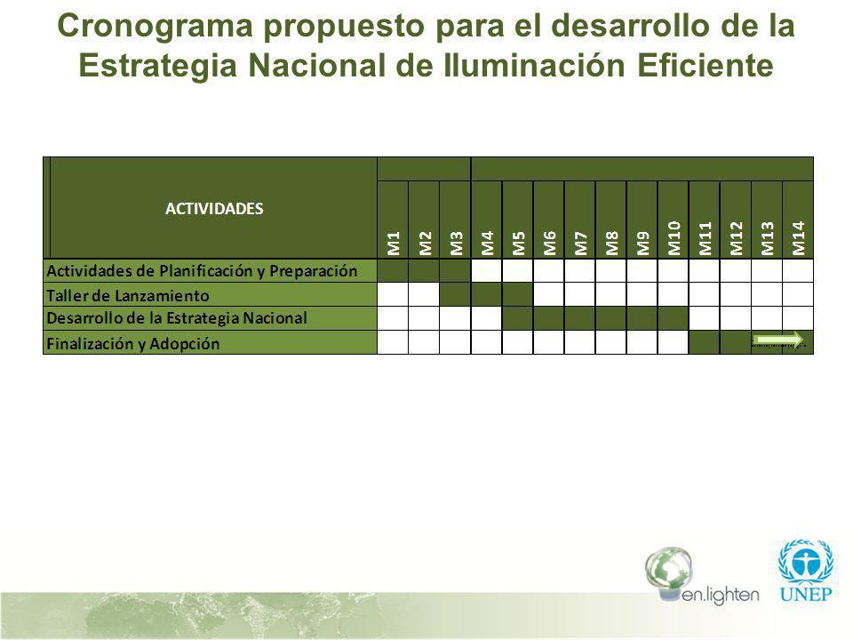 Cronograma propuesto para el desarrollo de la Estrategia Nacional de Iluminación Eficiente