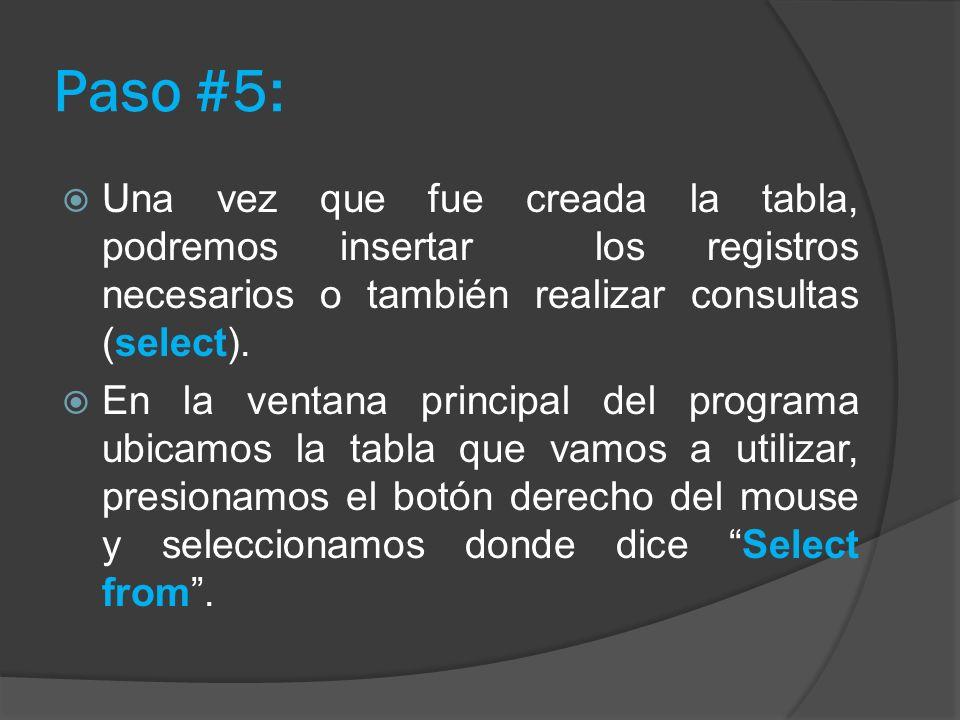 Paso #5: Una vez que fue creada la tabla, podremos insertar los registros necesarios o también realizar consultas (select). En la ventana principal de