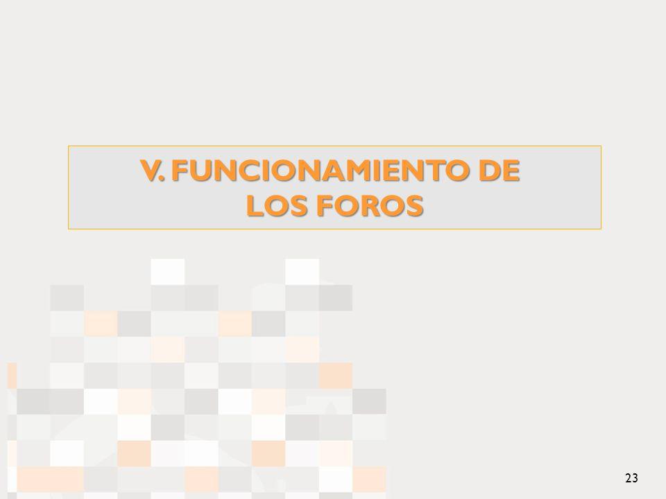 V. FUNCIONAMIENTO DE LOS FOROS 23