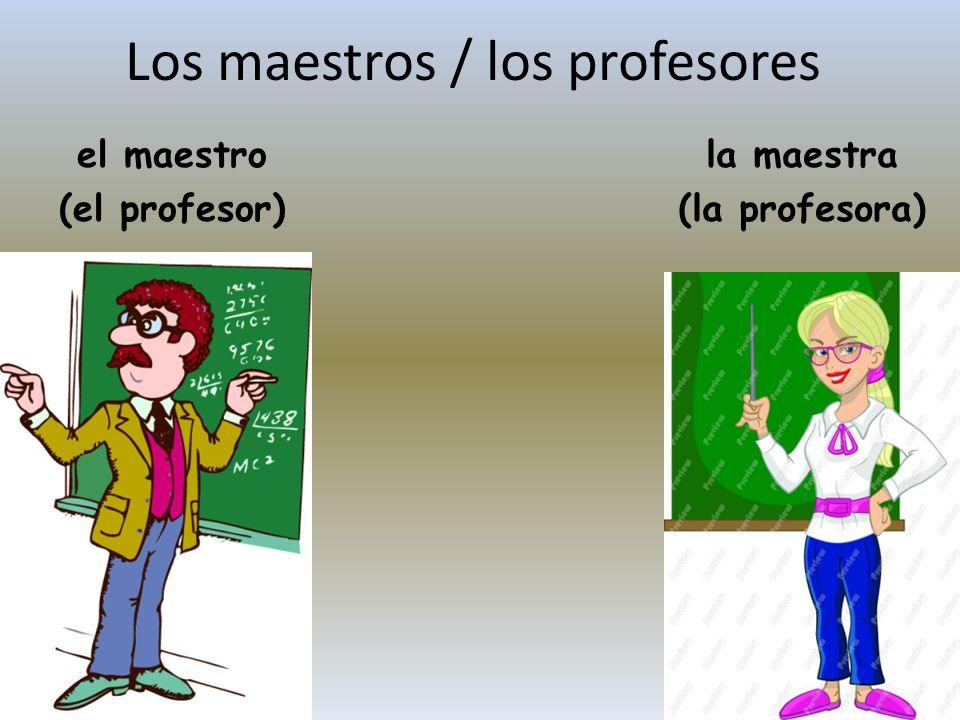 Los maestros / los profesores el maestro (el profesor) la maestra (la profesora)