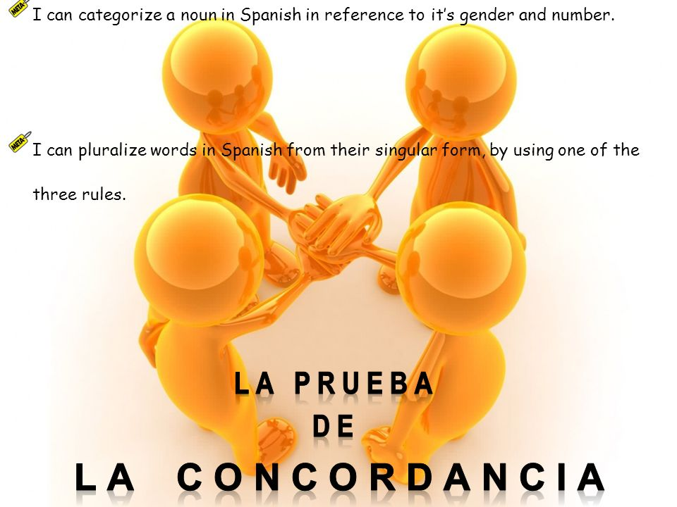 I can categorize a noun in Spanish in reference to its gender and number.