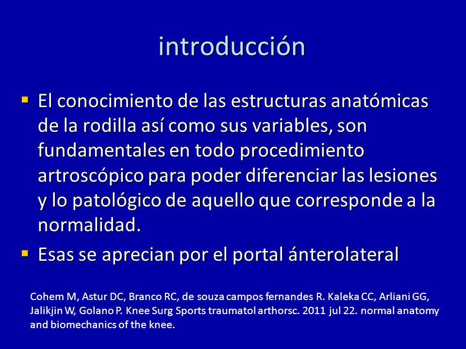 introducción El conocimiento de las estructuras anatómicas de la rodilla así como sus variables, son fundamentales en todo procedimiento artroscópico