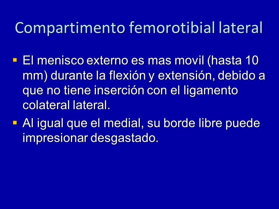 Compartimento femorotibial lateral El menisco externo es mas movil (hasta 10 mm) durante la flexión y extensión, debido a que no tiene inserción con e