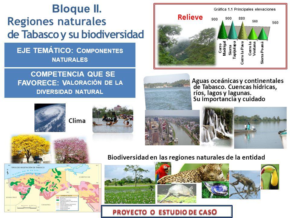 Bloque II. Regiones naturales de Tabasco y su biodiversidad EJE TEMÁTICO: C OMPONENTES NATURALES COMPETENCIA QUE SE FAVORECE: V ALORACIÓN DE LA DIVERS