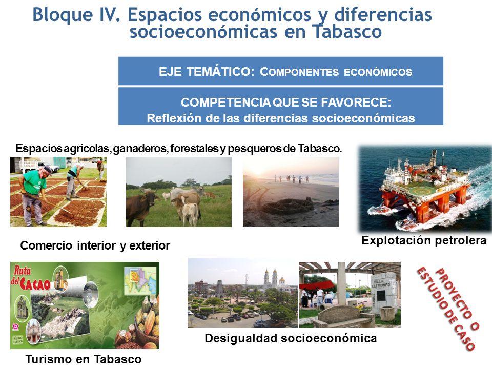 Bloque IV. Espacios econ ó micos y diferencias socioecon ó micas en Tabasco EJE TEMÁTICO: C OMPONENTES ECONÓMICOS COMPETENCIA QUE SE FAVORECE: Reflexi