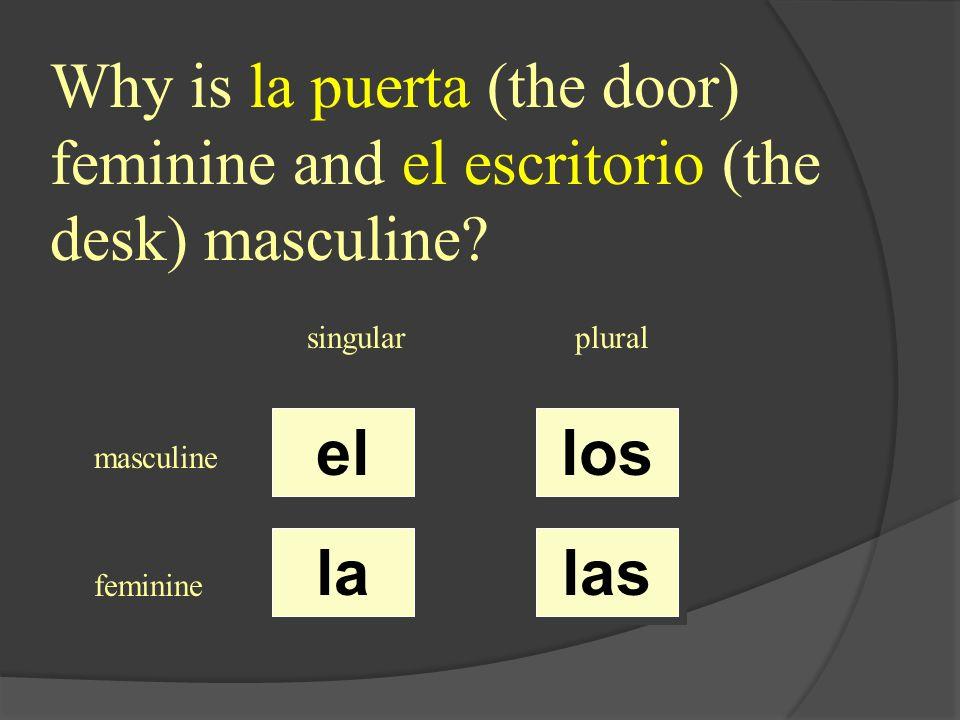 ¿ el / la / los / las ? estudiante singularplural masculine feminine el la los las