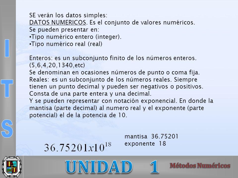 SE verán los datos simples: DATOS NUMERICOS. Es el conjunto de valores numéricos. Se pueden presentar en: Tipo numérico entero (integer). Tipo numéric